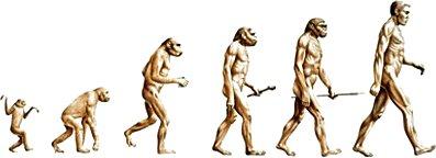 D_evolution
