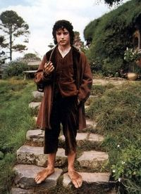 Frodo leaves the shire